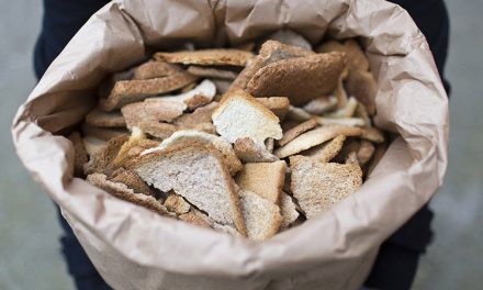 Offline Moment: Brewing Beer From Food Waste With Toast Ale