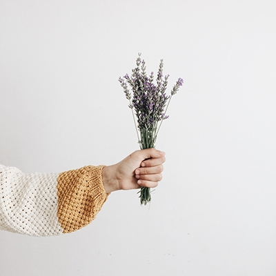 A Guide To Using Essential Oils Lavender