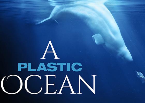 Documentaries To Binge Watch on Netflix A Plastic Ocean