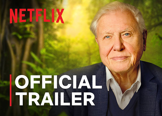 Documentaries To Binge Watch on Netflix David Attenborough A Life On Our Planet